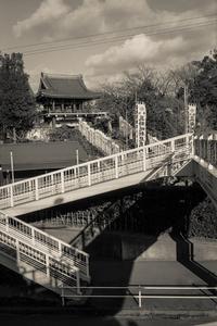 2017年2月4日 あやかしに満ちた歩道橋 - Silver Oblivion