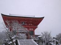 雪の清水寺 - ぶらり休暇