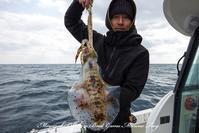 2017,02/01 ティップラン - 鯛ラバ遊漁船  Miyazaki Offshore Boat Game Marine Frog