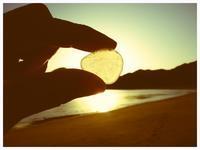 絶滅危惧種 - 今日も渚で日が暮れて