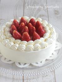 ガールズナイトにショートケーキ - Tortelicious Cake Salon