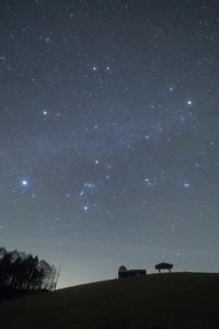 冬空に眠る天文台 - **photo cafe**