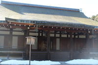 京都・苔寺 - 猪こっと猛進