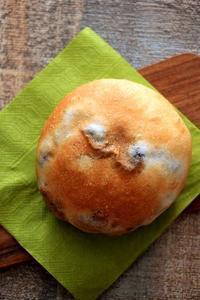 黒豆のまるパン(パン・スイーツ部門) - Takacoco Kitchen