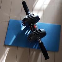 【AD】自宅で手軽にエクササイズできる腹筋ローラー - 日曜アーティストの工房