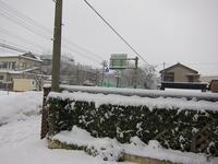 雪の朝です - ごまめのつぶやき