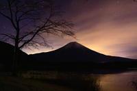 29年1月の富士(38)田貫湖の富士(写真部門) - 富士への散歩道 ~撮影記~