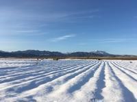 千曲川流域 雪景色 - 松代 日暮し散歩道