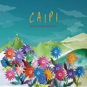 Kurt Rosenwinkel / CAIPI /SONG X JAZZ Inc - うつし世は夢、夜の夢こそまこと