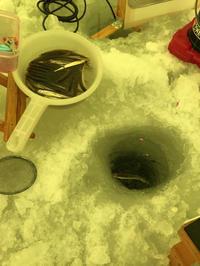 大志田ダム湖(菜魚湖)ワカサギ その2 - 漁師です・・・