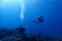 悪いことの後には・・・ ~糸満近海ガイド付きボートダイビング(ファンダイビング)~ - 沖縄本島最南端・糸満の水中世界をご案内!「海の遊び処 なかゆくい」