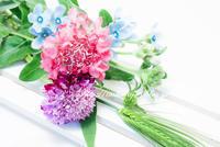 パステルカラーのお花と老眼鏡と☆ - necessary or unnecessary