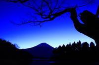 29年1月の富士(39)田貫湖の富士2 - 富士への散歩道 ~撮影記~