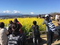 サクッと登り、サクッと下る吾妻山公園 - なのだの登山日誌