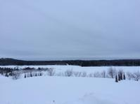 フィンランドの休日の過ごし方 - フィンランドでも筆無精