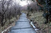 九重連山を周回 - 休日の山登り