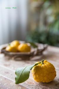冬の柚子 ♪ - Lovely Photo