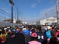 東京ベイ浦安シティマラソン2017 - 浦安フォト日記