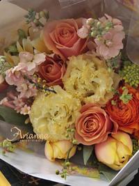 春色 - Arianna Style