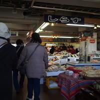 三崎のまぐろ - ちょんまげブログ