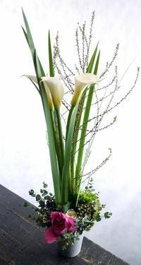 10周年のお祝いに。「背を高めに」。 - 札幌 花屋 meLL flowers