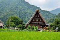 五箇山・白川郷の合掌集落 - 写真の散歩道