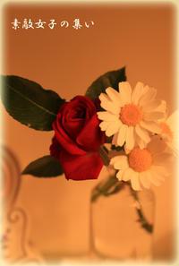 お化粧室のお花 ベランダより - ♪Princess Craft  素敵女子の集い