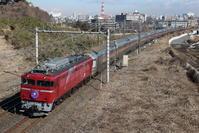EF81-98【カシオペア紀行】 - EH500_rail-photograph