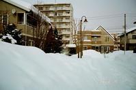 住宅街の積雪模様とさっぽろ雪まつり開催 - 照片画廊