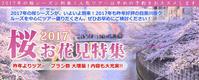 桜特集2017 - 日帰りツアー・社会見学・東京観光・体験イベン