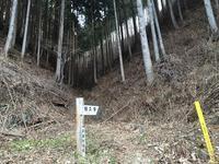 Hasetsune30K 2017 ② 試走 - トレイル大好き!