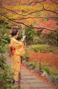 「宝筐院」京都2016秋の想出帖から - 雲母(KIRA)の舟に乗って