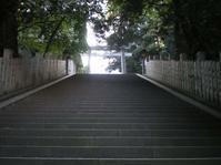 松山城【ナロ さん】 - あしずり城 本丸