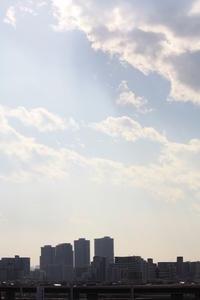 速報!葛飾区景観のよい散歩コースは。。 - 一場の写真 / 足立区リフォーム館・頑張る会社ブログ