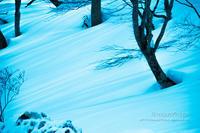 Winter*days2**雪の上のストライプ - きまぐれ*風音・・kanon・・