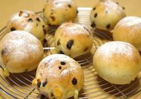 チョコとチーズの丸パン@パン教室 - ~あこパン日記~さあパンを焼きましょう