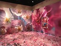 静岡県立美術館 蜷川実花展 スモールワールドの不思議な住人たち。 - ブリキの箱