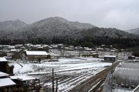 雪降る夜は - 京都ときどき沖縄ところにより気まぐれ