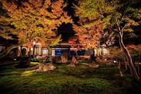 紅葉2016! ~建仁寺ライトアップ~ - Prado Photography!