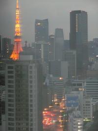 花のお江戸で思う事「東京タワー派?スカイツリー派?」・・・編 - 岡山の実家・持家・空き家&中古の家をリノベする。