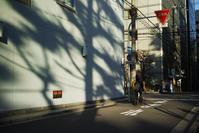 #dp2Q 西区ストリートスナップ #大阪 - 関西ウォーカー自遊人 Trial
