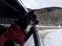 ☆厳冬の青森へ☆ - 神戸でアロマテラピーを。