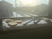 お口のケアと、香川県。 - さぬきジェンヌのおいしい日和