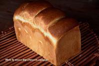 ホップで山食@中種法 - 森の中でパンを楽しむ