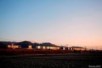 冬の朝陽を受けて。 - 山陽路を往く列車たち