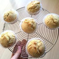 食料マフィン事情 - テディベアのブログ Urslazuli