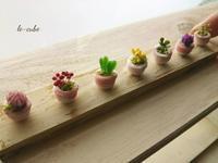 ミニミニ鉢植え。 - 手作り雑貨&観葉植物 kinomi