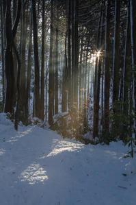 大雪の思い出 - デジカメ写真集
