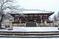 雪の当麻寺 - Pane e Dolce