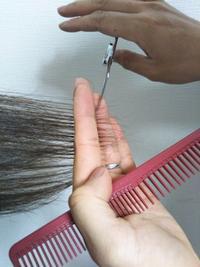 人毛医療用ウィッグのお手入れ - 三重県 訪問美容/医療用ウィッグ  訪問美容髪んぐのブログ